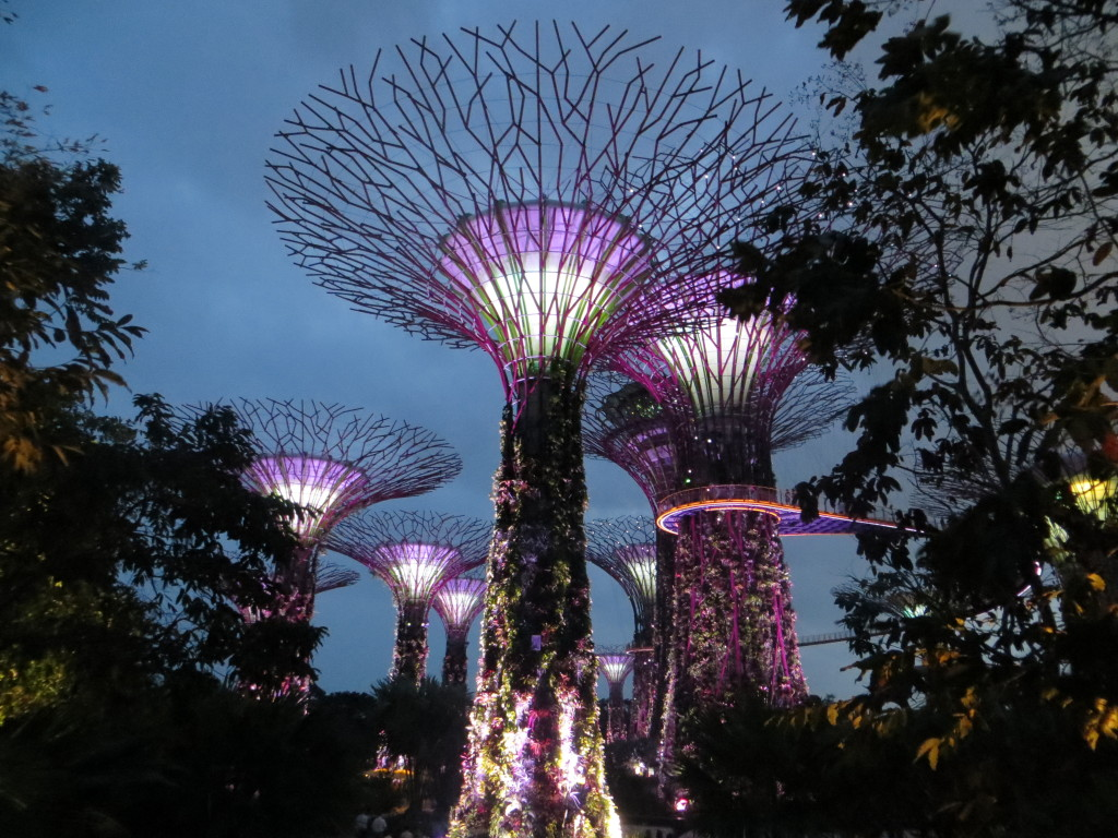 Another highlight of the Gardens By the Bay was the Supertrees Grove, structures as much as 150 feet high, that serve as vertical gardens. At night they do two 15-minute light-and-music shows that were fun.
