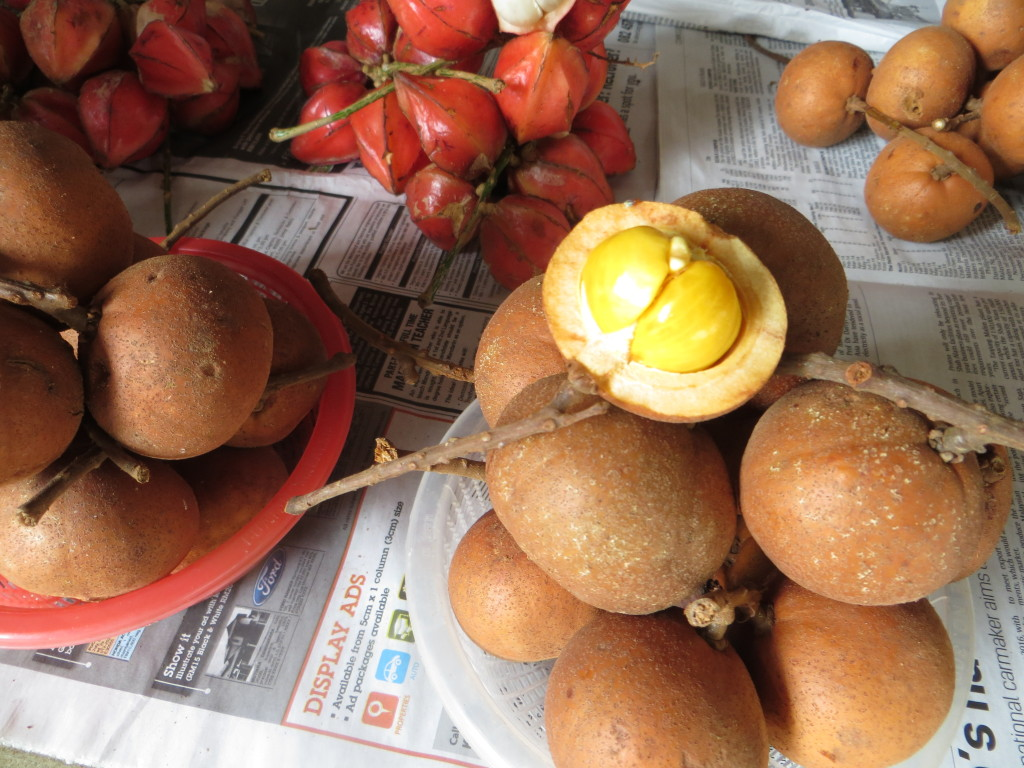 Fruits from the jungle