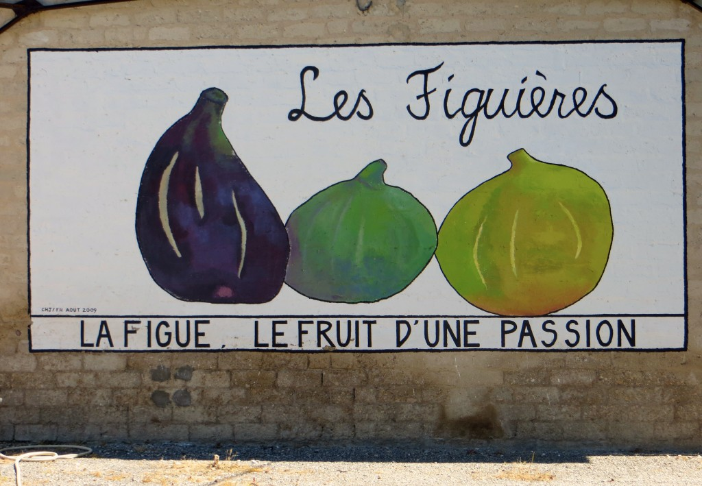 People in Provence are passionate about what they do. At this place we stopped in, they're passionate about figs.