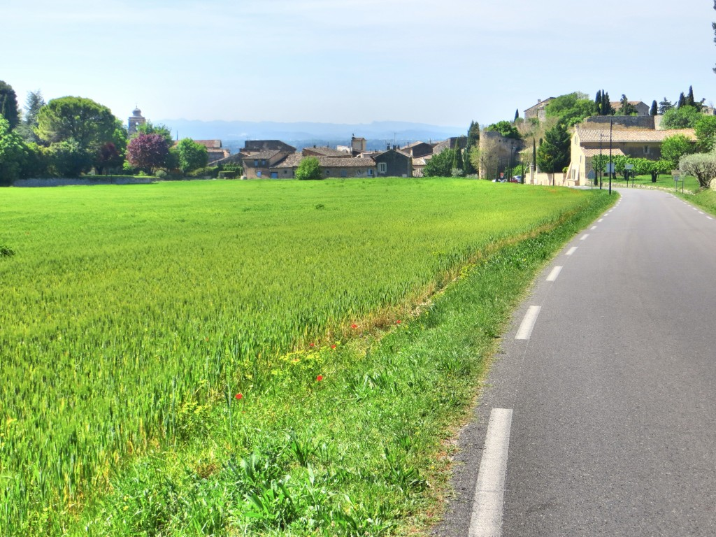 Small, paved roads, green fields, beautiful farmland ... that's biking in Provence