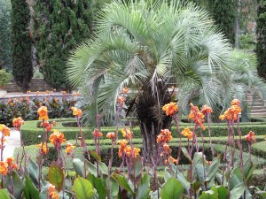 We spent a pleasant afternoon in the Jardin des Plantes