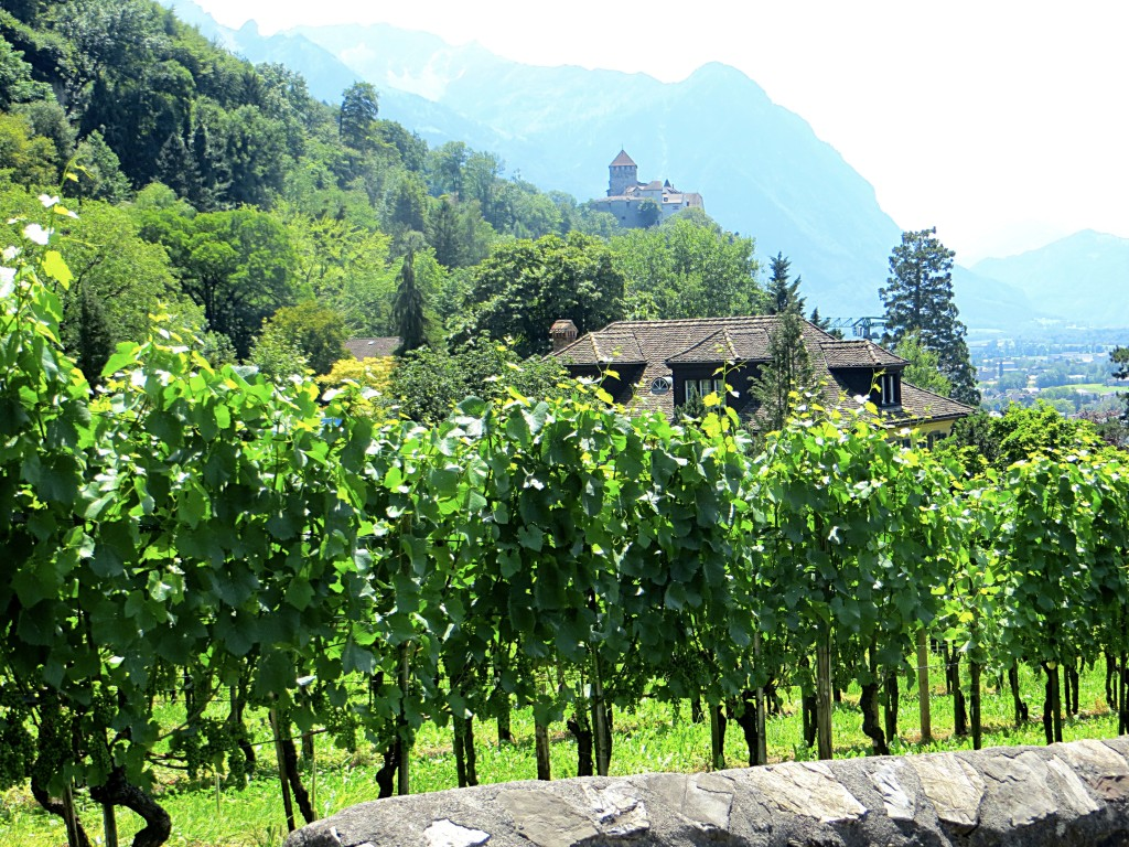 The prince of Liechtenstein's castle looks over the capital of Vaduz and surrounding homes and vineyards