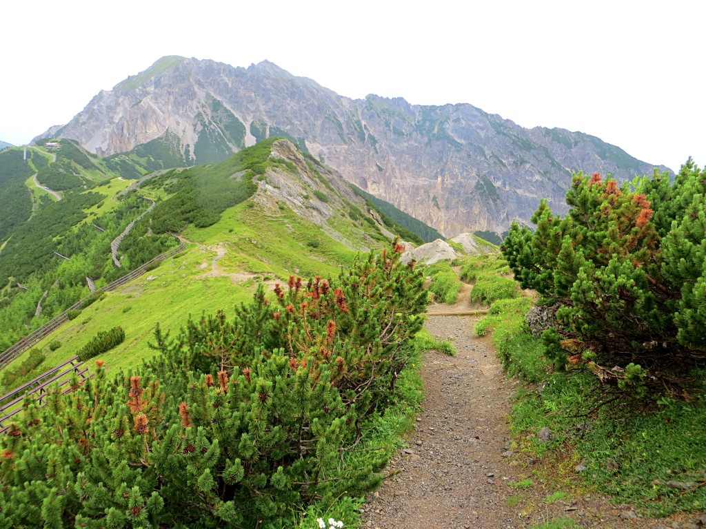The trail leading up to the national border mountain ridge