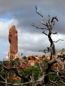 Some moody weather moved in and out of Arches, heightening the drama