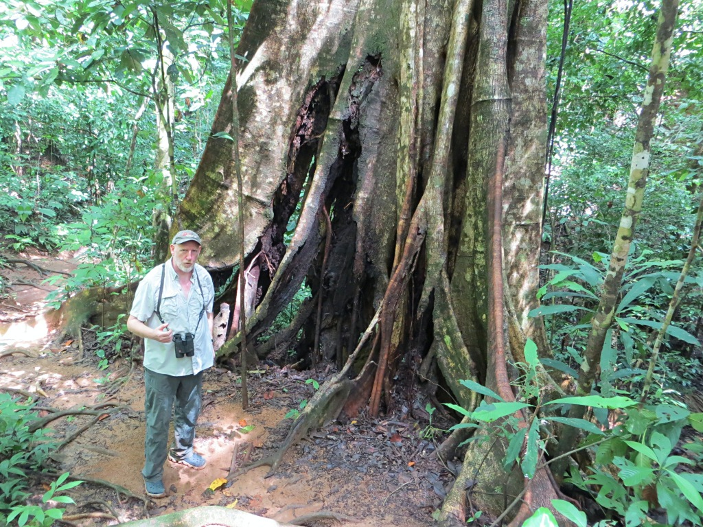 Our incredible guide Philip