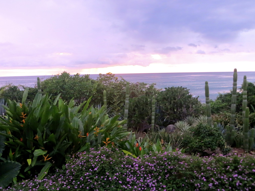 The view of the gardens and beach from the patio