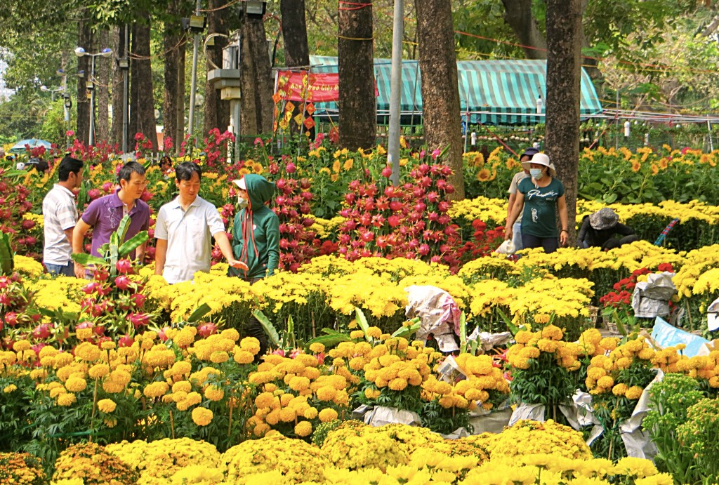 The city is awash in yellow and red flowers and trees