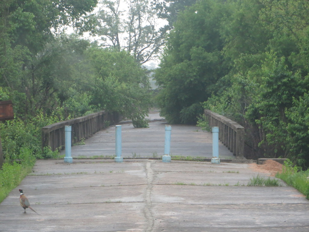 The bridge in the DMZ over which returning POWs crossed back to the South.