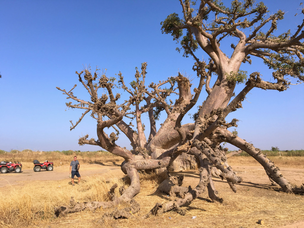 Mark next to an 800-year-old baobab tree on our tour of the countryside