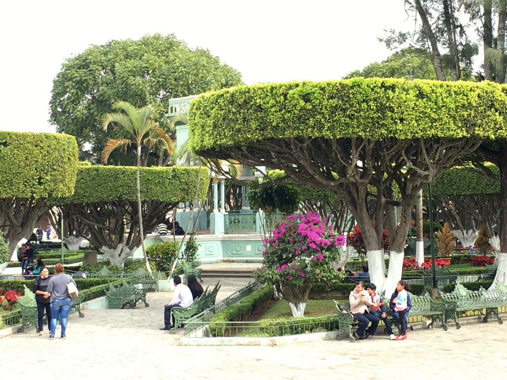 Comitán's main square, with its highly manicured trees, was always lively
