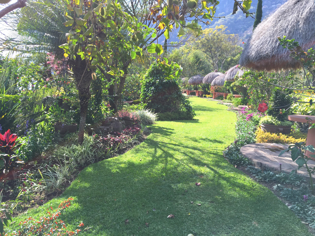 Just a tiny sample of the gardens surrounding Hotel Atitlán