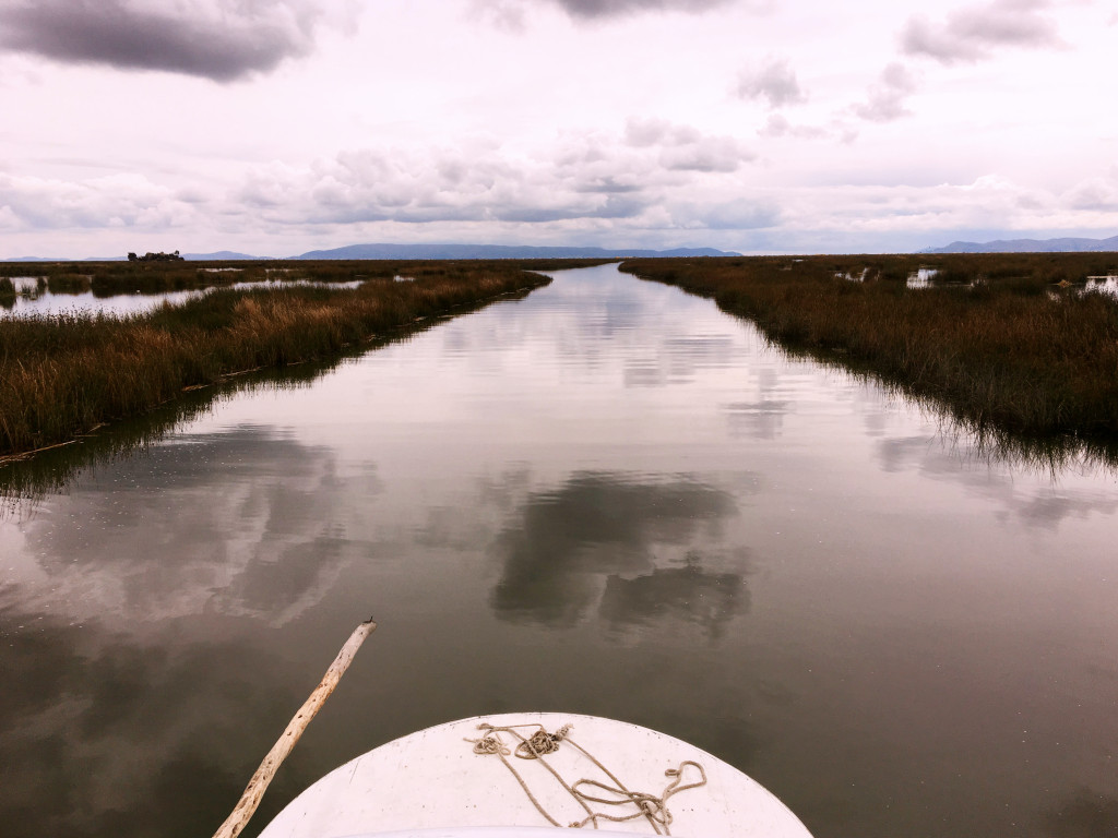 As we're heading into the floating islands, you can see how little of Lake Titicaca we can actually see. And yes, those are the reeds out of which the islands a bit further out are built.