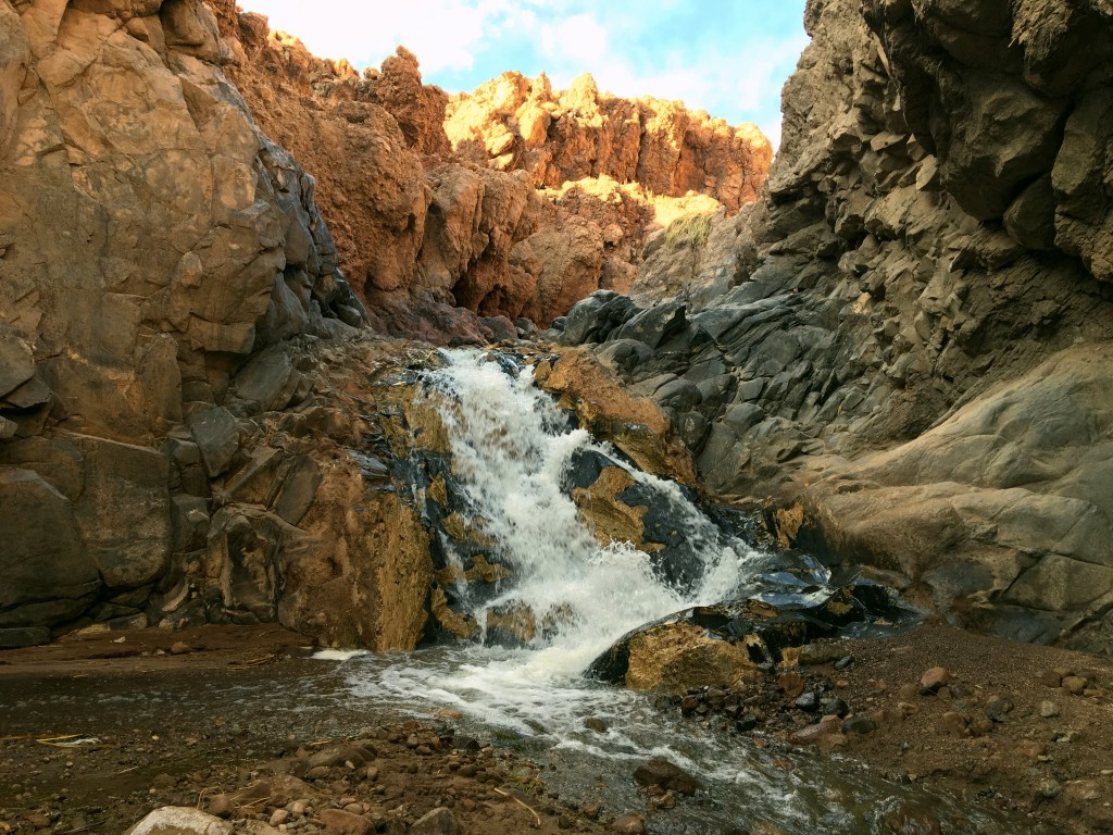 It was a beautiful canyon and a great hike, though it was a little surreal to be around so much water in the driest desert on earth