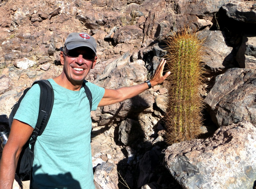 I wasn't really leaning on that cactus, though you had to be careful not to slip while hiking lest you roll into something like that