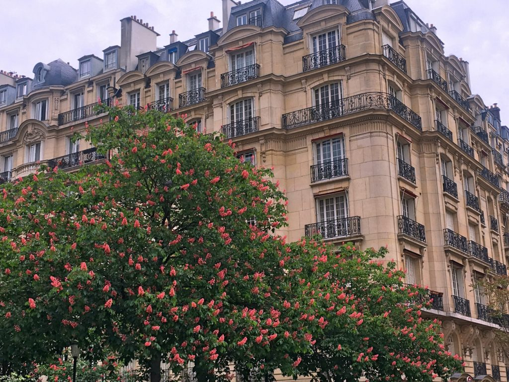 Grand Paris buildings and trees in the spring
