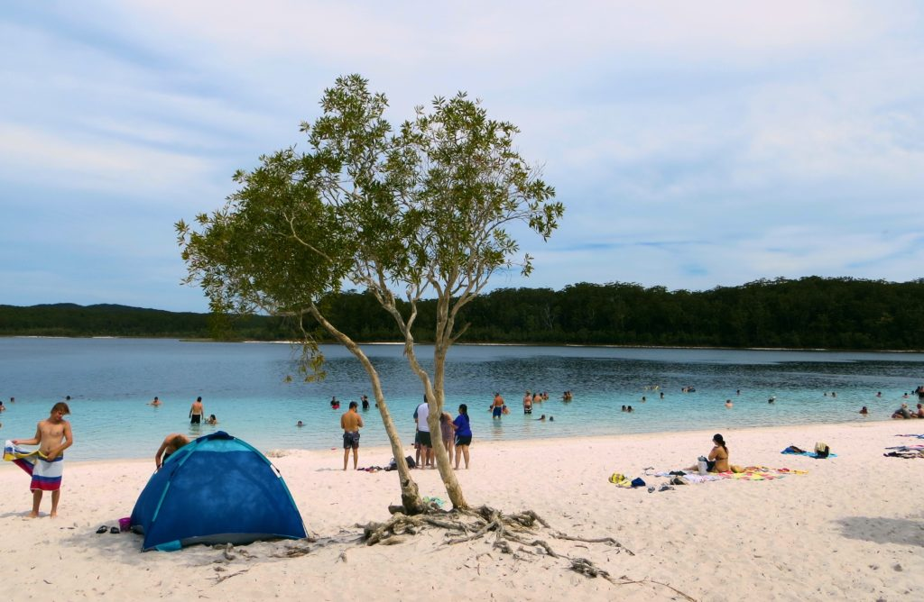 This was Lake McKenzie as we saw it after clouds moved in, obscuring the brilliant blue we saw in bright sunlight
