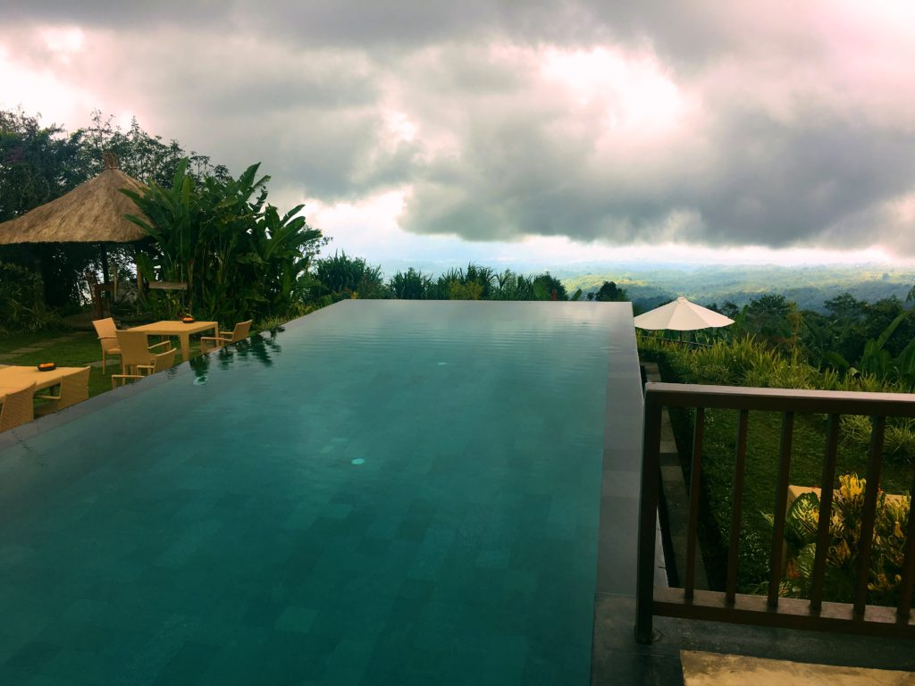 In addition to our overnight trip to Munduk, we biked up into the hills a couple days earlier to a plantation/resort partly for lunch and partly just to see stuff. It was way up in the hills with this infinity pool that seemed to just hang out over the edge of the earth. Great views, but not so great food.