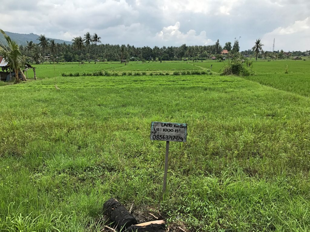 Of course, the perfect location of Villa Padma at the edge of the rice fields won't last forever, as this For Sale sign suggests. Another good reason not to invest in real estate when things can change.