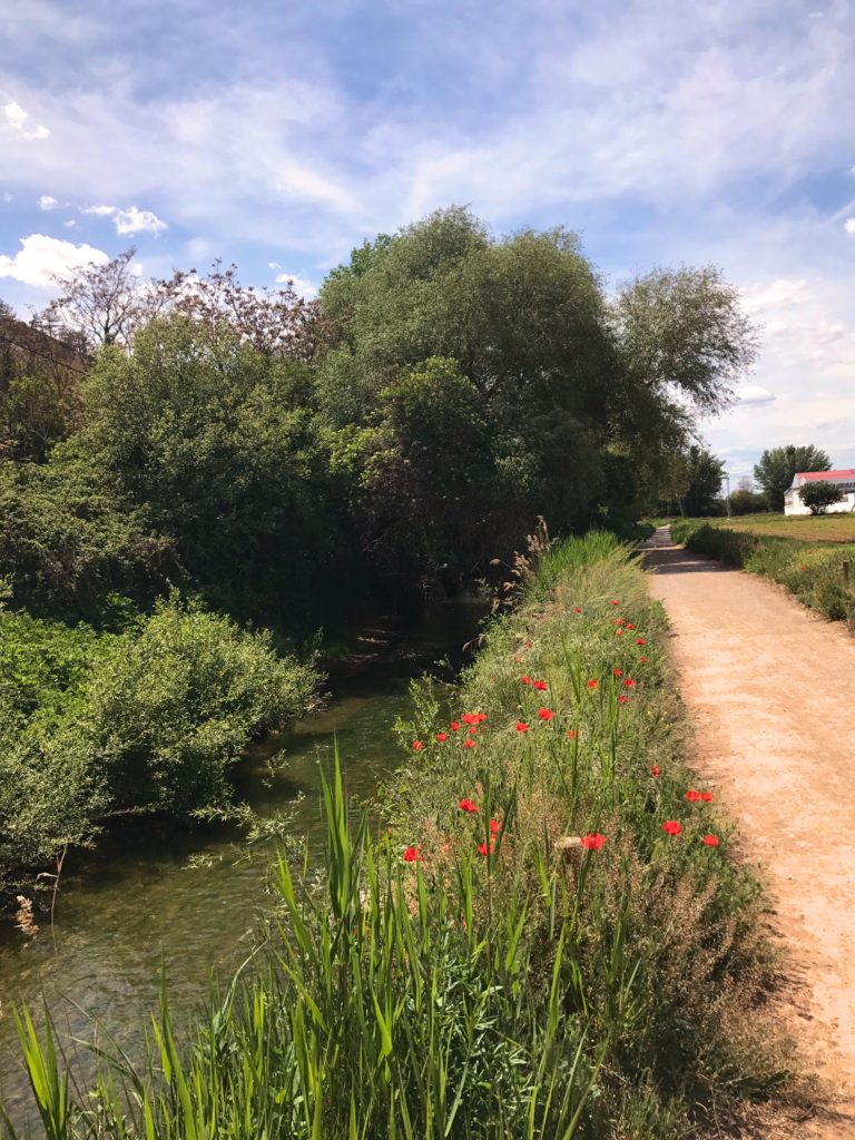 A country road, the tiny River Turia, and poppies make for a nearly perfect walk outside of Teruel